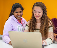 Two students working on an online class project