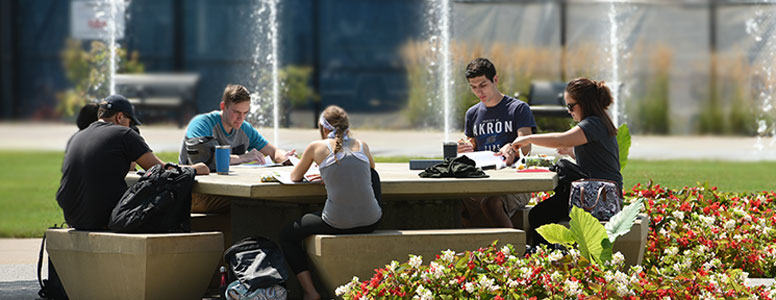 Student studying together outdoors