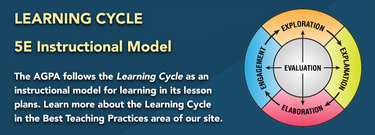 Learning Cycle Lesson Plans