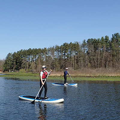 People standup paddleboarding