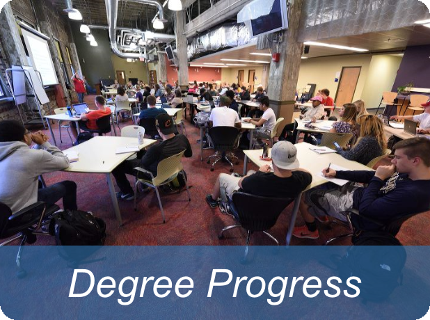 Link to degree progress report information