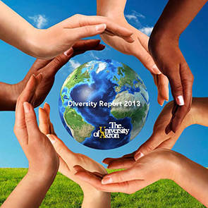 Diversity Report for 2013