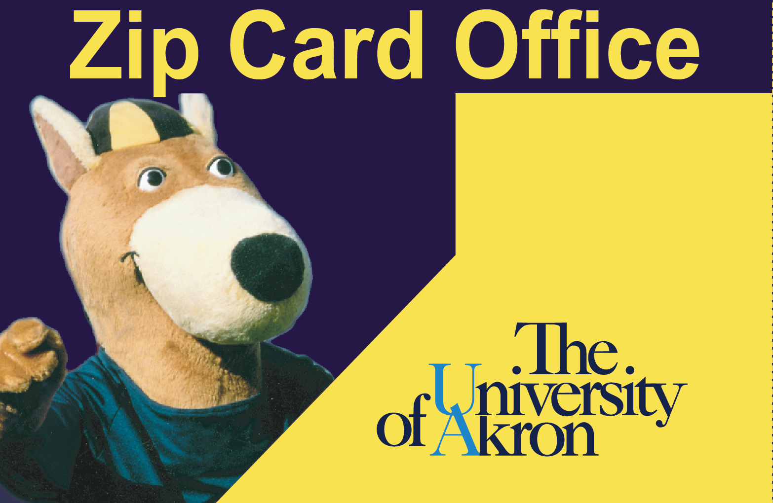Zip Card, your University of Akron ID