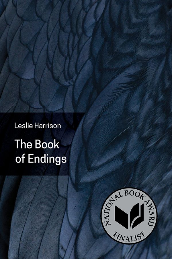 Cover of 'The Book of Endings'