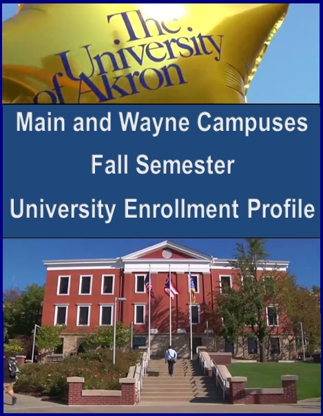 Main and Wayne Campuses Fall Semester University Enrollment Profile